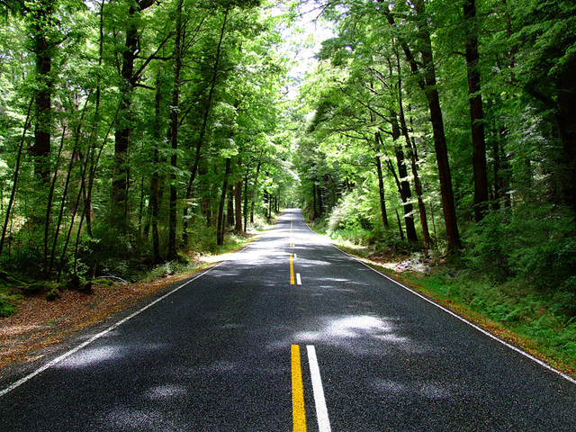 the-road-1361700-640x480